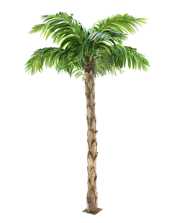 The Peruvian Palm Tree | Large 8ft tall Artificial Tree